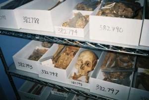 remains-of-chero-nottoway
