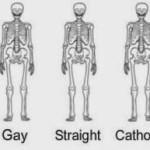 Skeleton-B05