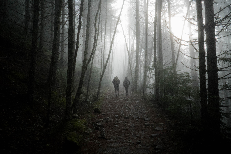 Foggy_Couple2